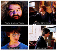 i think i need heering aidz: You're a wizard Harry  I'm a What?  You're a parselmouth  I'm a what? i think i need heering aidz