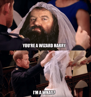 Just some pictures from the royal wedding: YOU'RE A WIZARD HARRY  I'M AWHAT? Just some pictures from the royal wedding
