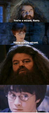 Wizard, Harry, and Youre a Wizard Harry: You're a wizard, Harry.  You're a hairy wizard