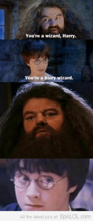Funny, Videos, and Pictures: You're a wizard, Harry  You're a hairy wizard.  All the latest pics at EpicLOL.com Funny Pictures, Funny Videos | EpicLOL