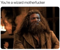 Wizard, Youre, and Motherfucker: You're a wizard motherfucker
