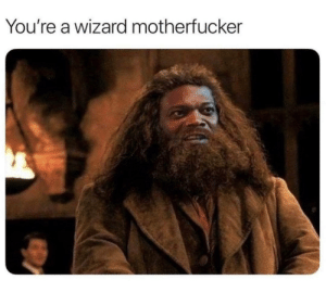 Wizard, Youre, and Motherfucker: You're a wizard motherfucker Motherfucker