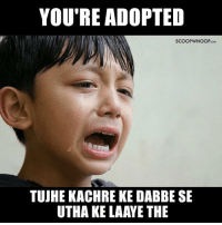 Memes, 🤖, and All: YOU'RE ADOPTED  SCOOPWHOOPcow  TUJHE KACHRE KE DABBE SE  UTHA KE LAAYE THE We've all said this to our younger siblings! rakshabandhan rakhi siblinglove scoopwhoopinsta