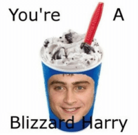 Memes, 🤖, and Harry: You're  Blizz  ard Harry