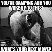 Memes, Pussy, and 🤖: YOU'RE CAMPING AND YOU  WAKE UPTOTHIS  WHAT'S YOUR NEXT MOVE Grab her by the pussy