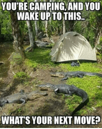 Breakfast Gator: YOU'RE CAMPING AND YOU  WAKE UPTOTHIS  WHAT'S YOUR NEXT MOVE? Breakfast Gator