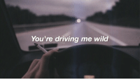 Driving: You're driving me wild
