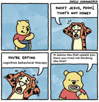I don't know on which level of irony this meme is: YOU'RE EATING  cognitive behavioral therapy  SAFELY ENDANGERED  SWEET JESUS, PooHS  THAT's NOT HONEY  It seems like that upsets you.  Have you tried not thinking  like that? I don't know on which level of irony this meme is