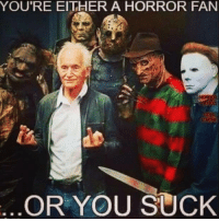 You Sucks: YOU'RE EITHER A HORROR FAN  GORE  OR YOU SUCK