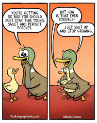 Memes, Shut Up, and Forever: YOU'RE GETTING  SO BIG! YOU SHOULD  JUST STAY THIS YOUNG,  SWEET AND PERFECT  FOREVER.  BUT HOW  IS THAT EVEN  POSSIBLE-  JUST SHUT UP  AND STOP GROWING.  FowllanquageComics.com  ©Brian Gordon What I'm really saying is I never wanna deal with teenagers. Bonus Panel: goo.gl/WsPSgM Visit my store why don'tcha? Fowllanguagestore.com