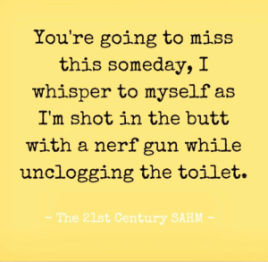 Butt, Haha, and Boys: You're going to miss  this someday, I  whisper to myself as  I'm shot in the butt  with a nerf gun while  unclogging the toilet.  The 21st Century SAHM Boys...haha