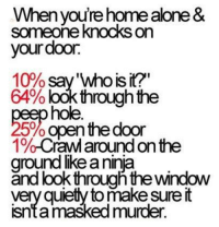 Home Alone, Memes, and Windows: you're home alone &  someone knocks on  our door.  10% say 'Who is it?'  64%  look through the  hole  5%openthe door  1%  on the  ground like aninia  throughthe window  very quietly tomake sure it  masked murder.