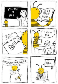 Test, Bee, and You: YOU'RE  JE IDEE  E BEE  BEE  AM A  BEE  TEST  CONG  BEE!  BEE You're a bee