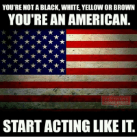 Memes, Patriotic, and Soldiers: YOU'RE NOT A BLACK, WHITE, YELLOW OR BROWN  YOU'RE AN AMERICAN  I VETERANS  STARTACTING LIKE IT Amen! veteranscomefirst veterans_us Veterans Usveterans veteransUSA SupportVeterans Politics USA America Patriots Gratitude HonorVets thankvets supportourtroops semperfi USMC USCG USAF Navy Army military godblessourmilitary soldier holdthegovernmentaccountable RememberEveryoneDeployed Usflag StarsandStripes