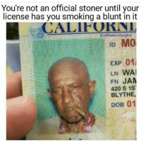 Blunts, Memes, and Wais: You're not an official stoner until your  license has you smoking a blunt in it  adabbedoutnalaughin  ID MO  EXP 01l  LN WAI  FN JAM  420 S 1ST  BLYTHE,  DOB 01