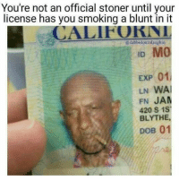 Memes, Wais, and 🤖: You're not an official stoner until your  license has you smoking a blunt in it  @dabbedoutnlaughin  EXP 01l  LN WAI  FN JAM  420 S 1ST  BLYTHE,  DOB 01