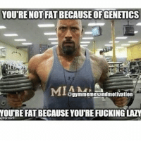😂😂 . workout bodybuilding crossfit strong motivation instalike powerlifting bench deadlift squat squats gymmemes gymhumor love funny instamood gymmotivation jokes legday girlswholift fitchick fitspo gym fitness bossgirls: YOURE NOT FATBECAUSEOFGENETICS  @gymmemesandmotivation  YOURE FATBECAUSE YOUREFUCKING LAZY  gflip com 😂😂 . workout bodybuilding crossfit strong motivation instalike powerlifting bench deadlift squat squats gymmemes gymhumor love funny instamood gymmotivation jokes legday girlswholift fitchick fitspo gym fitness bossgirls