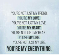 Friends, Life, and Love: YOURE NOT JUST MY FRIEND,  YOURE MY LOVE.  YOURE NOT JUST MY LOVE.  YOURE MY HEART.  YOURE NOT JUST MY HEART.  YOURE MY LIFE  YOURE NOT JUST MYLIFE,  YOU'RE MY EVERYTHING