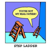 Stepladder: YOU'RE NOT  MY REAL FATHER!  STEP LADDER Stepladder
