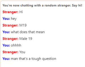Omegle, Mean, and What Does: You're now chatting with a random stranger. Say hi!  Stranger: Hi  You: hey  Stranger: M19  You: what does that mean  Stranger: Male 19  You: ohhhh  Stranger: You  You: man that's a tough question man omegle is suddenly a lot harder