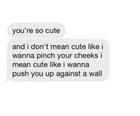 Cute, Mean, and Push: you're so cute  and i don't mean cute like i  wanna pinch your cheeks i  mean cute like i wanna  push you up against a wall