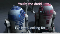 droid: You're the droid  I've been looking for.  ARWARSPICUUPLINESTUMBLR.COM
