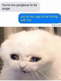 Memes, Ugly, and Gorgeous: You're too gorgeous to be  single  you're too ugly to be flirting  with me.  Delivered