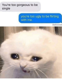Ugly, Gorgeous, and MeIRL: You're too gorgeous to be  single  you're too ugly to be flirting  with me.  Delivered meirl