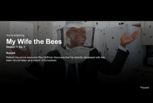 Tumblr, Blog, and Http: You're watching  My Wife the Bees  Season 1: Ep. 1  Buzzed  Retired insurance executive Ray Huffman discovers that his recently deceased wife has  been reincarnated as a swarm of honeybees.  Paused liartownusa:  My Wife the Bees