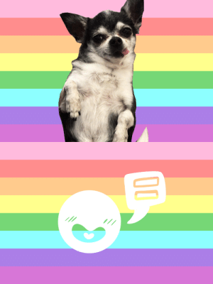 yourfavsaysgayrights: Mr. Marbles says gay rights!! thank you for the submission!! : yourfavsaysgayrights: Mr. Marbles says gay rights!! thank you for the submission!!