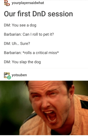 DnD, Never, and Dog: yourplayersaidwhat  Our first DnD session  DM: You see a dog  Barbarian: Can I roll to pet it?  DM: Uh... Sure?  Barbarian: *rolls a critical miss*  DM: You slap the dog  yotsuben  Oe Im never playing DnD again
