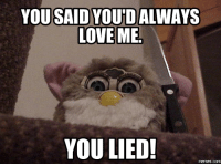 Furby was a bit creepy.: YOURSAIDYOUTDALWAYS  LOVE ME  YOU LIED! Furby was a bit creepy.