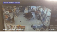 Memes, Abc News, and 🤖: YouTube Bertrand Beaulieu  Grand Falls, New Brunswick  abc NEWS Security Camera catches footage of 3 deer entering and destroying the inside of a gas station!! 😳🦌😂 (Via:ABCNews-Twitter) WSHH