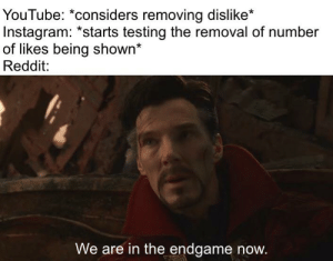 Instagram, Reddit, and youtube.com: YouTube: *considers removing dislike*  Instagram: *starts testing the removal of number  of likes being shown*  Reddit:  We are in the endgame now. We are the only ones left with sanity...