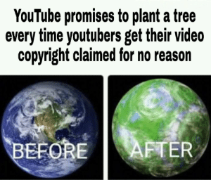 youtube.com, Time, and Tree: YouTube promises to plant a tree  every time youtubers get their video  copyright claimed for no reason  AFTER  BEFORE