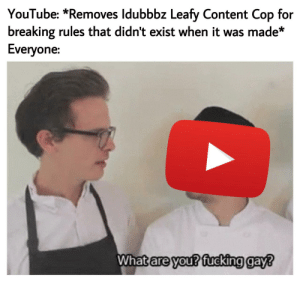 Why is no one making memes about this?? A piece of YouTube history was just wiped out for nothing!: YouTube: *Removes Idubbbz Leafy Content Cop for  breaking rules that didn't exist when it was made*  Everyone:  What are you? fucking gay? Why is no one making memes about this?? A piece of YouTube history was just wiped out for nothing!