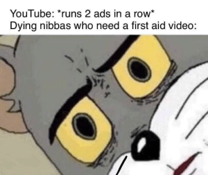 Dank, Memes, and Target: YouTube: *runs 2 ads in a row*  Dying nibbas who need a first aid video: Big oof by CeleryHunter143 MORE MEMES