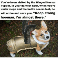 "Hoomans: You've been visited by the Winged Hussar  Pupper. In your darkest hour, when you're  under siege and the battle seems lost, he  will arrive and save you. ""Keep strong  hooman, i'm almost there."""