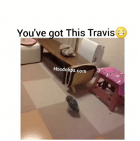 This never gets old lmao hoodclips comedy HoodComedy: You've got This Travis  3  Hood clips.com This never gets old lmao hoodclips comedy HoodComedy
