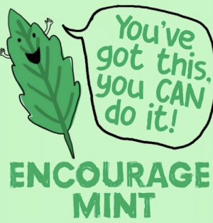 https://t.co/0raVXjfLXf: You've  got this.  \you CAN  do it!  ENCOURAGE  MINT https://t.co/0raVXjfLXf