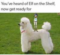 "Elf, Elf on the Shelf, and Tumblr: You've heard of Elf on the Shelf,  now get ready for <p><a href=""http://sadspacerocks.tumblr.com/post/165652667497"" class=""tumblr_blog"">sadspacerocks</a>:</p><blockquote><p>🍜 🐶</p></blockquote>"