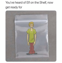 Elf, Elf on the Shelf, and Memes: You've heard of Elf on the Shelf, now  get ready for Yo! Follow @TOPTREE for the funniest stoner memes on IG 🔥 @TOPTREE 👈👈👈