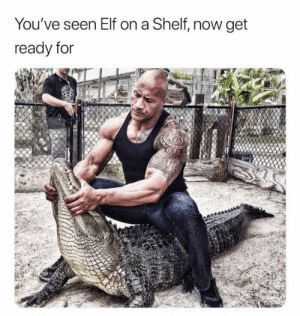 The Rock on a croc: You've seen Elf on a Shelf  now get  ready for The Rock on a croc