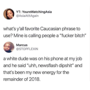"Bitch, Dank, and Dude: YT: YoureWatchingAsia  @AsiaAtltAgain  what's y'all favorite Caucasian phrase to  use? Mine is calling people a ""fucker bitch""  Marcu  @STOPFLEXIN  a white dude was on his phone at my job  and he said ""uhh, newsflash dipshit"" and  that's been my new energy for the  remainder of 2018. ""What the freaking heck?"" by Freddie83 MORE MEMES"