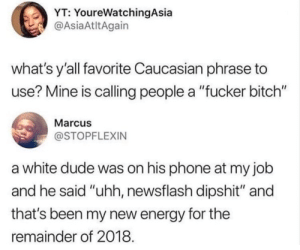 "Bitch, Dank, and Dude: YT: YoureWatchingAsia  @AsiaAtltAgain  what's y'all favorite Caucasian phrase to  use? Mine is calling people a ""fucker bitch""  Marcus  @STOPFLEXIN  a white dude was on his phone at my job  and he said ""uhh, newsflash dipshit"" and  that's been my new energy for the  remainder of 2018 Listen here, pal by GrimActual MORE MEMES"