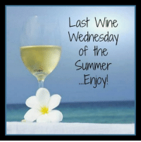 ~Wish I was Here!~ ~L~<3: YTWIMT  Last Wine  Wednesday  of the  Summer  Eryoy ~Wish I was Here!~ ~L~<3