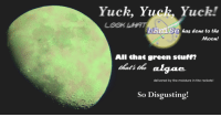 "Reddit, Moon, and Stuff: Yuck, Yuck. Yuck!  LOOn WHAT  DETİ S 5 has done to the  Moon!  All that green stuff  delivered by the moisture in the rockets!  So Disgusting! <p>[<a href=""https://www.reddit.com/r/surrealmemes/comments/8f7vz8/so_disgusting/"">Src</a>]</p>"