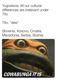 "Prelude to the Yugoslav wars: Yugoslavia: All our cultural  differences are irrelevant under  Tito  Tito: ""dies*  Slovenia, Kosovo, Croatia,  Macedonia, Serbia, Bosnia:  COWABUNGA ITIS Prelude to the Yugoslav wars"