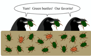 boomerangjr:Saw a post earlier about how science diagrams look like shitposts and immediately thought of this: Yum! Green beetles! Our favorite! boomerangjr:Saw a post earlier about how science diagrams look like shitposts and immediately thought of this