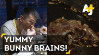 Brains, Bunnies, and Memes: YUMMY  BUNNY BRAINS! Spicy rabbit head, anyone?
